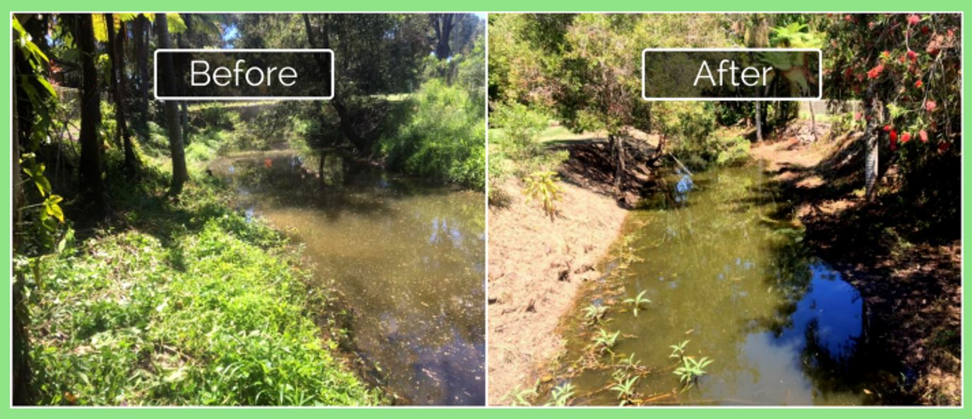 Satusteam weed control by Weedtechnics before and after beside a waterway