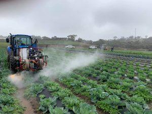 Satusteam™ weeding at Bio Park Organic Farm, South Australia