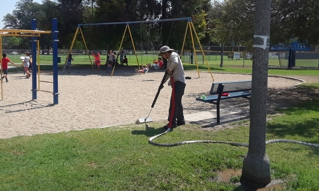 Steam weed control in schools and parks